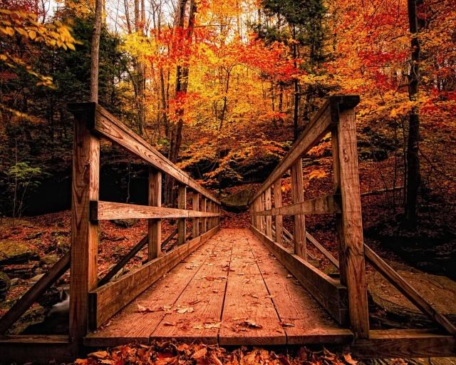 ws_Autumn_Landscapes_1280x1024